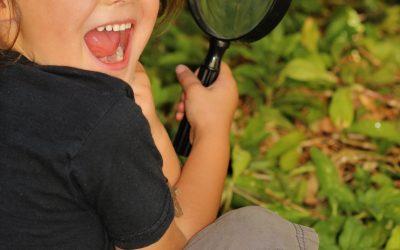 Az élményhez vezető tanulás és a tanuláshoz vezető élmény